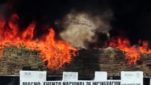 70 tonnes of drugs go up in smoke in Mexico border state