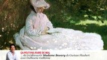 "#lire - ""Madame Bovary"" de Gustave Flaubert lu par Guillaume Gallienne"