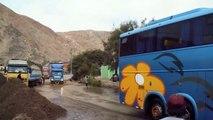 Buses Por El Sur Del Perú - 2015