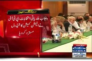 PTI rejects govt's phased LB polls in Punjab & Polls should be in Rangers supervision