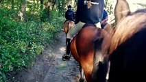 Tour Riding in Mols Hills, Denmark, Northern Europe