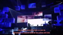 T.M.Revolution-Vestige (Live Ver.)