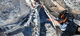 Termik santral yapılmak istenen Yırca'da zeytin ağaçları kül oldu