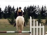 Emma cantering and jumping with no bridle or saddle.