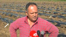 Fier, fermeret fillojne mbjelljen e perimeve te stines