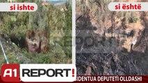A1 Report - Edicioni i Lajmeve, 30 Dhjetor 2013 - Albania News