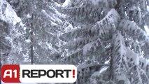 A1 Report - Shtegtim, ski ne Brezovice