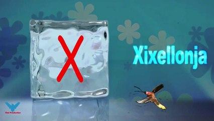 X Alfabeti Shqip shkronja X