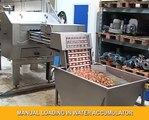 Egg Breaking and Separation: OptiBreaker Compact 6 with separation
