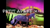 CHEVAL ISLANDAIS-APRES-MIDI HIVERNAL-DOMAINE DE RABREUX-39-