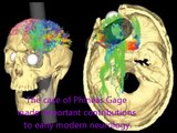Case study of phineas gage