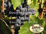 Margerum on Sauvignon Blanc, Tastes of the Valleys. Solvang Wine Tasting,