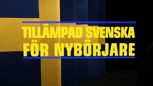 Svenska nybörjare 3