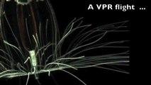 A VPR flight through a microcosm