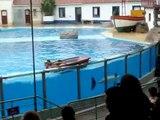 Baía dos Golfinhos - Jardim Zoológico de Lisboa - 3/4