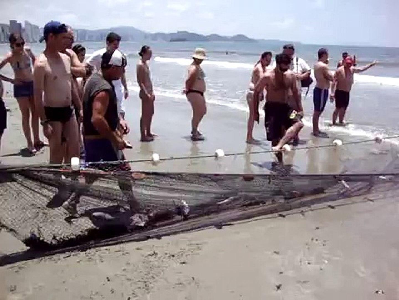 Pesca de arrastão da tainha em Balneário Camboriú, SC