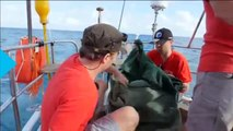 Trash-mapping Expedition Sheds Light on 'Great Pacific Garbage Patch'