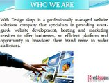 Web Design Guys - Websites-Hosting-SEO