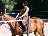 concour de dressage cheval club 3 aux écuries du foron le 08/07/10
