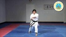 Chi no kata - International Hayashi-Ha Shito-Ryu