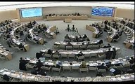 Kirsten Roberts from the Irish Human Rights Commission at the UN Human Rights Council