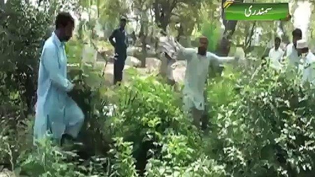 Shocking Videos: Women's Dead Bodies Raped in Graveyard Near Faisalabad