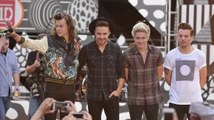 One Direction's Niall Horan And Louis Tomlinson Confirm Hiatus