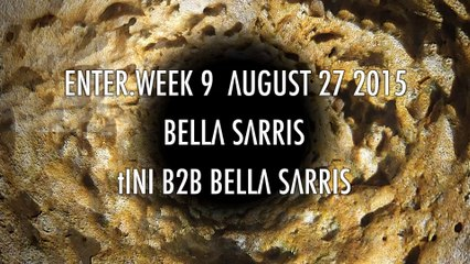 ENTER.Ibiza Week 9