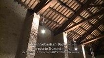 Maurizio Zaccaria, Francesco Marino - Chaconne D minor BWV 1004 - Bach/Busoni, Violin Partita No.2