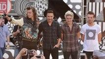 One Direction's Niall Horan und Louis Tomlinson bestätigen die Auszeit