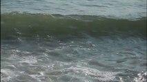 Biarritz Grande plage Surf grosses vagues – Côte Basque