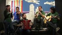 The Irish Brothers - Polkas