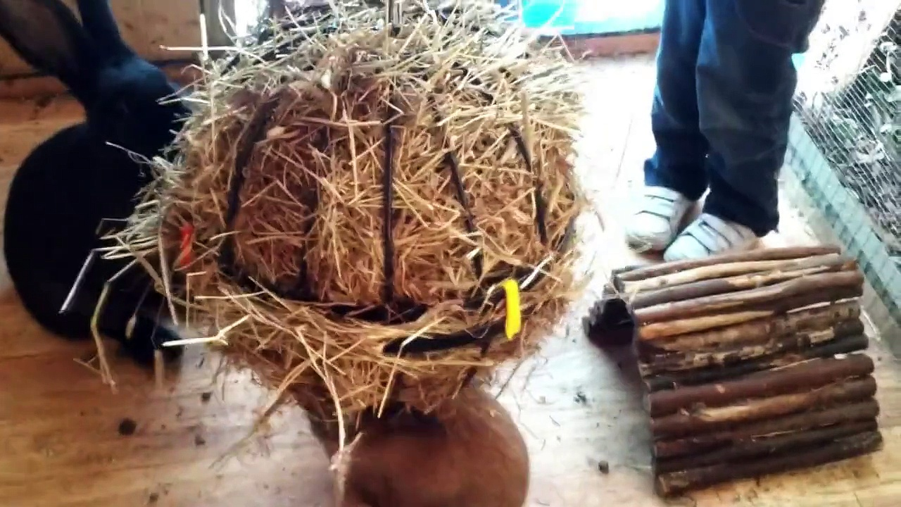 Giant Rabbits' Giant Hay Ball – Fairly Beloved Rabbit Care