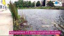 Nantes Beaulieu - Vente appartement T3 dans résidence récente, proche Loire et Busway