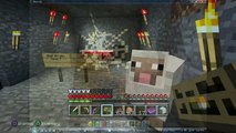 Minecraft Herobrine Sightings--2015 Herobrine sightings SCARY