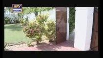 Bulbulay Episode 225 Full Ary Digital Drama August 26, 2015