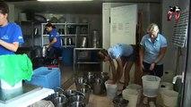 Marineland TV - Reportage N°30 - Le nourrissage des requins à Marineland - 23/08/2011