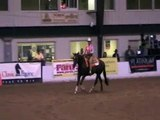 Lady reiner at the Tradition reining horse show