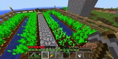Minecraft : Windows 10 Edition Beta - Survivors Guide ep.1 Carrotssssssss