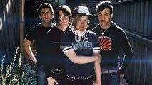 Fall Out Boy - Disloyal Order Of Water Buffaloes |Traducida en español|♥