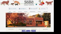 Spay and Neuter Clinic Galeton, Co (303) 499-1800