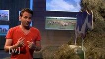 Tierfutter - Gefahr für die Umwelt und die Welternährung? | W wie Wissen | DAS ERSTE