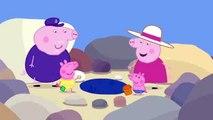 Peppa Pig   s02e10   Rock Pools clip4
