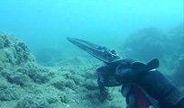 Zıpkınla Yapılan Bir Akya Balığı Avı