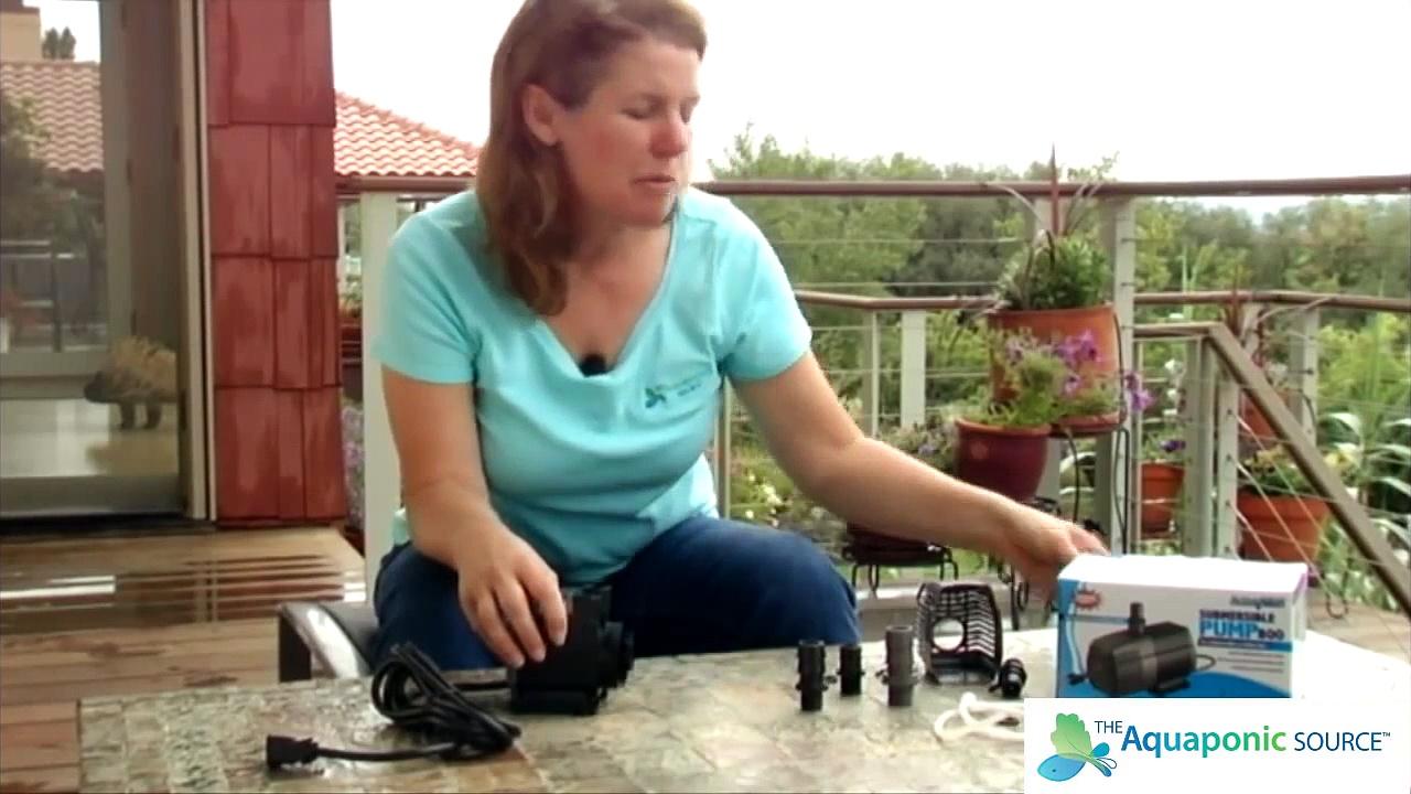 Aquaponics Pump Basics