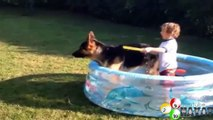 Funny babies and animals bathing together Cute baby & animal compilation