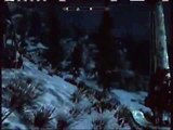 TES V Skyrim Dumbest thing I've ever done in skyrim (fighting a giant)