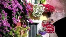 www.brenzone.it - Brenzone sul Garda - Lago di Garda - Lake Garda - Gardasee