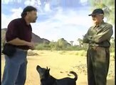 Gary Wilkes teaches Alan Alda how to clicker train a dog