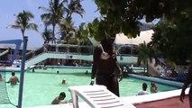 En el Hotel Triton de la Habana, Cuba.